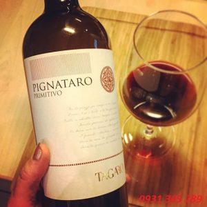Rượu Vang ý Pignataro Primitivo Tagaro 1