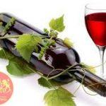 Rượu vang nhập khẩu chính hãng