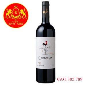 Rượu Vang Cantoalba Cabernet Sauvignon