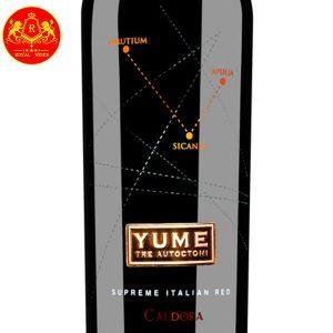 Rượu Vang Yume Tre Autoctoni Caldora 1