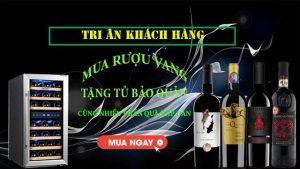 Tặng Tủ Bảo Quản Rượu Vang Don Vino