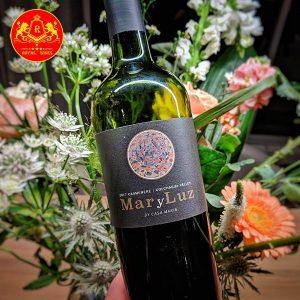Rượu Vang Mar Y Luz Carmenere 1