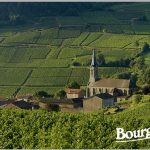 Ruou Vang Bourgogne