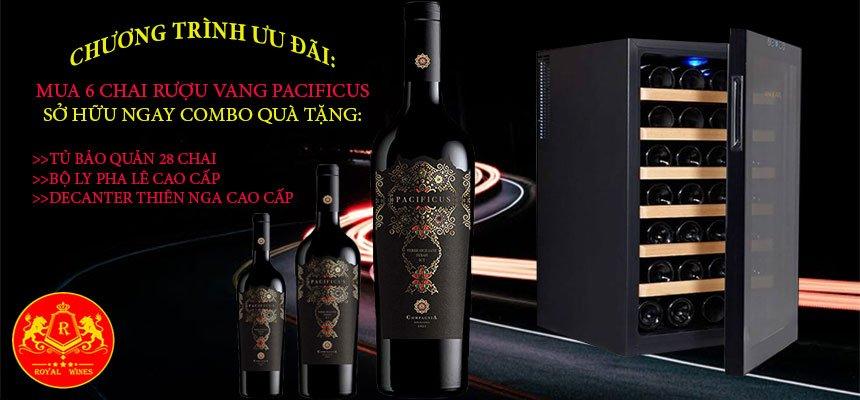 Rượu Vang Pacificus Terre Siciliane Syrah Igt Tặng Tủ